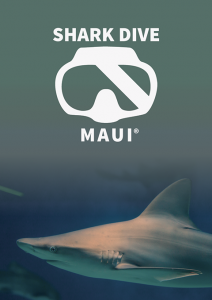 Shark Dive Maui Poster Image