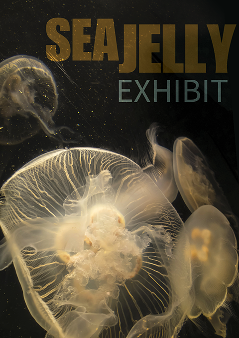 Sea Jelly Exhibit Poster Image