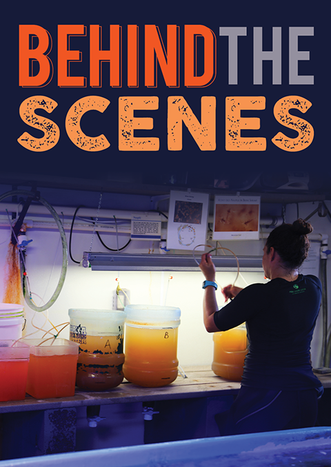 Behind-the-Scenes Tour Poster Image