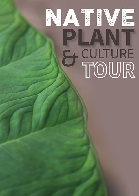 Native Plant & Culture Tour