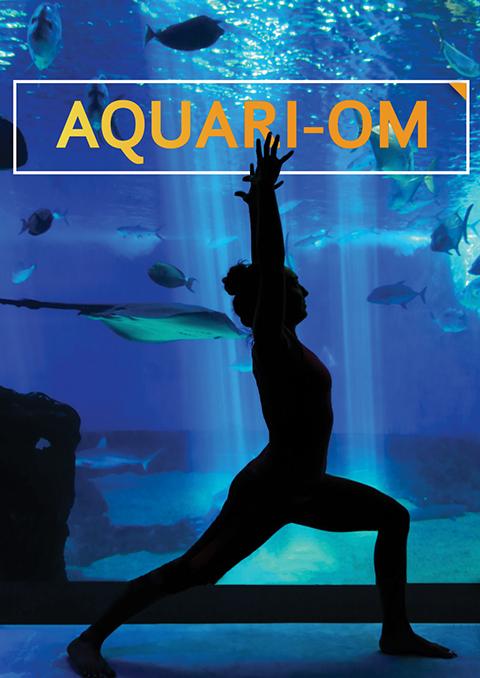 Aquari-OM Poster Image