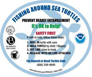 Fishing Around Sea Turtle Program