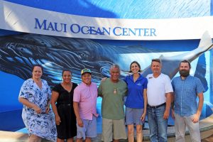 maui ocean center, things to do in maui, maui activities