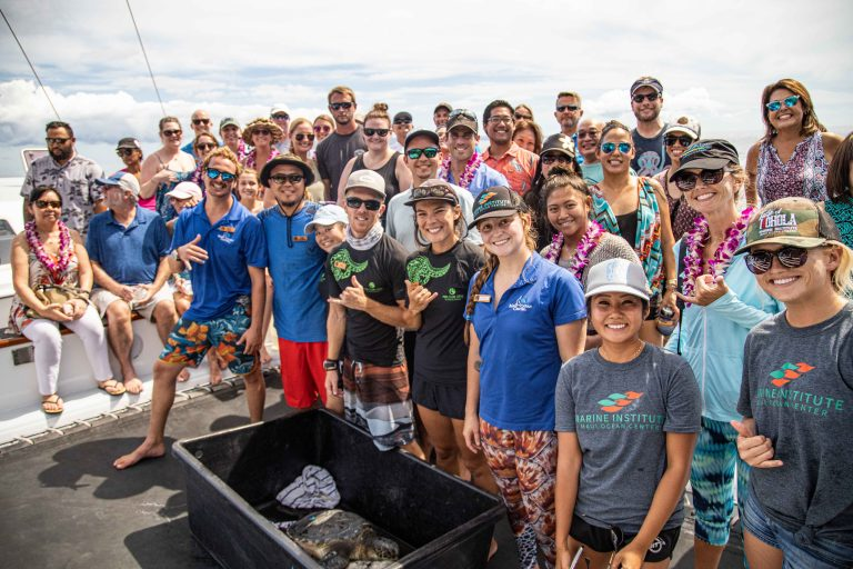 Maui Ocean Center Releases Four Sea Turtles Off Maui's Coast