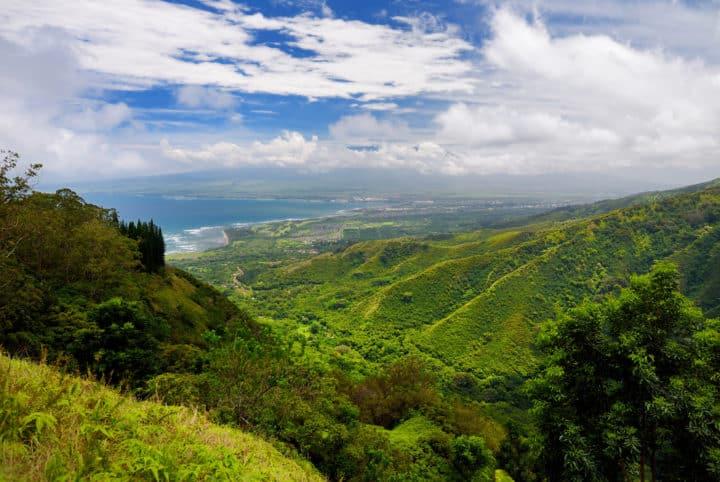 The central Maui