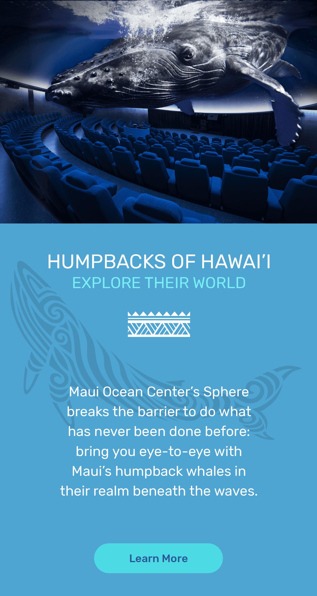 Humpbacks of Hawai'i