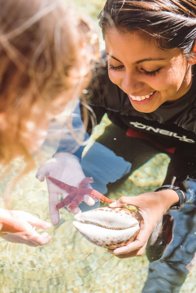 Maui Ocean Center's commitment to healthy marine ecosystems extends far beyond our aquarium