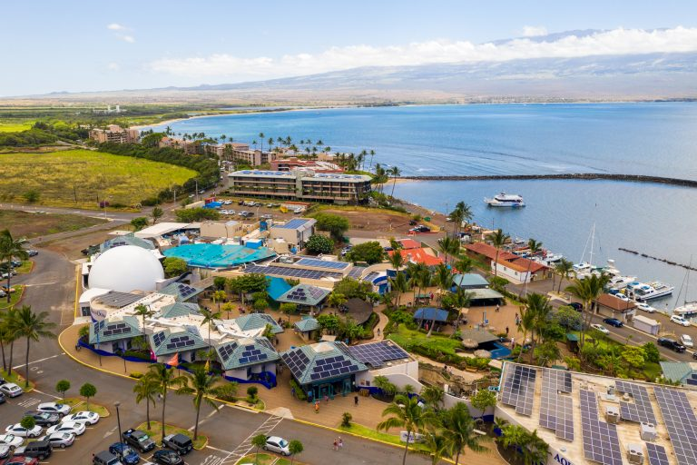 Maui Ocean Center Appoints Toni Rojas as Director of Marketing